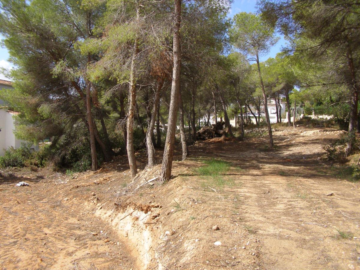Verschiedene Grundstücke zum Verkauf in Moraira, El Bosque