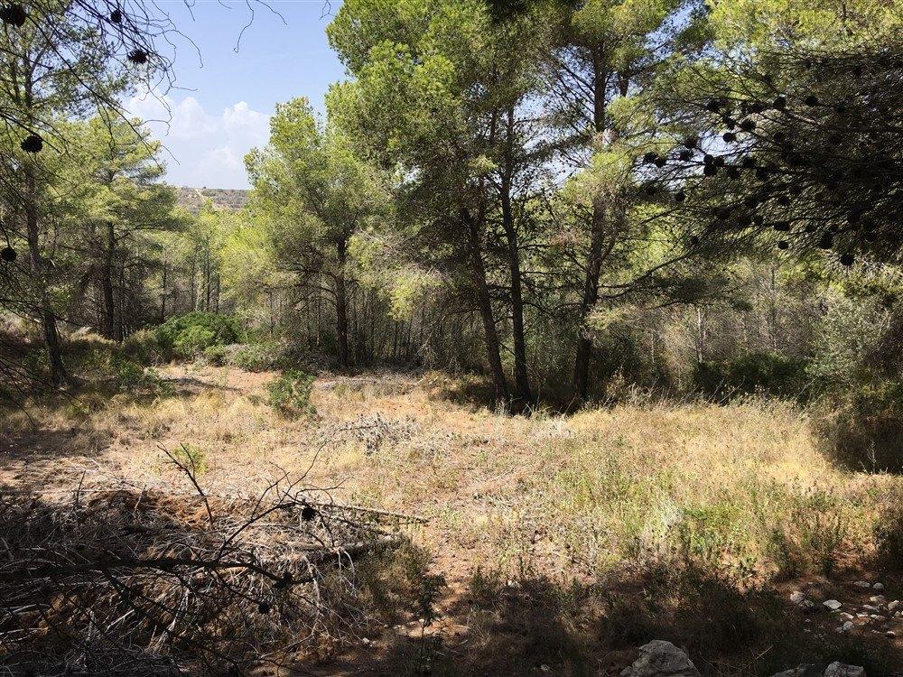 Grundstück zum Verkauf in Moraira, offenen Blick.